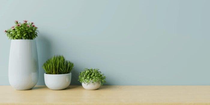 Proyección del minimalismo